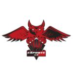 Profilbild von OWL-eSports e.V.